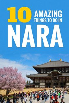 10 amazing things to do in Nara, Japan. These are the top tourist attractions in Nara and all the must-sees. Enjoy the deer in Nara park and all the other highlights. Japan Travel Guide, Asia Travel, Tokyo Travel, Travel Guides, Travel Deals, Travel Hacks, Hiroshima, Nara Japan, Tokyo Japan