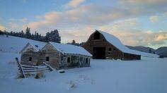 A barn east of Lewistown. It is in great shape.