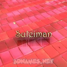 SULEIMAN as a 3D Wallpaper Wallpaper Free Download, Wallpaper Downloads, Screensaver Images, Purple Accent Walls, I Love You Images, India Images, Video Google, Red Tiles, Name Wallpaper