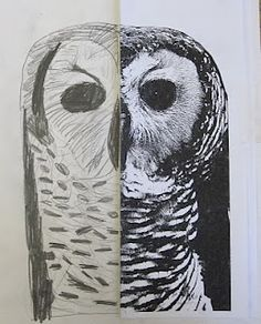 """Students draw the other """"half"""" of a fairly symmetrical black and white photocopied photo"""