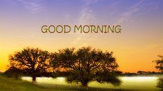Good Morning Beautiful Landscape
