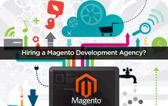 Elsner is popular reputable magento website development company in California, USA with very reasonable price.