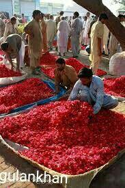 Flowers market in the Pakistan