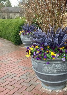 spring boxes featuring lavender around a fountain blue eucalyptus porch planted for spring fresh cut pussy willow at the front door window box pussy willow and pansies oval urn spring pot mixed coo…