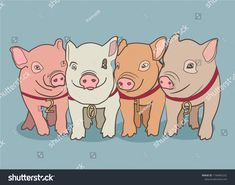 Vector illustration, Happy New Year 2019 funny card design with cartoon pigs face Happy New Year Cards, Happy New Year 2019, Pig Illustration, Illustrations, New Year Card Design, Pig Images, Hand Shadows, Cutest Animals, Funny Cards