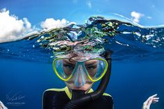 """Have Fun - Maldives, snorkeling, may 2015, bright day, nice weather, beautiful seascape. <a href=""""http://www.shutterstock.com/pic-282100673/stock-photo-ocean-life-water-sports-postcard-underwater-world-with-funny-freediver-near-water-surface.html"""">Big image of funny diver at Shutterstock © 2015 Vitaliy-Sokol.com</a>  Thx for watching"""