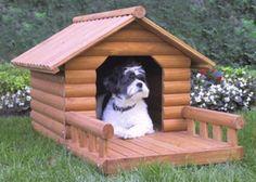 La importancia de las casas para perros - Perros Blog