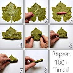 How to make dolmades with fresh grape leaves And Repeat steps 1000 times! Sarma ve dolma – The Most Practical and Easy Recipes Lebanese Cuisine, Lebanese Recipes, Turkish Recipes, Greek Recipes, Ethnic Recipes, Comida Armenia, Tapas, Wine Leaves, Albanian Recipes