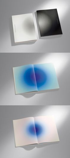 Zumtobel Group Annual Report 2011-2012 by Anish Kapoor