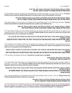 Religion: TOMO 1 GENESIS | MagCloud Book Of Exodus, Teaching Spanish, Torah, Religion, Religious Education, Faith