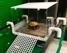 Large Turtle Tower Above tank basking area turtle Basking Aquatic Turtle Tank, Turtle Aquarium, Aquatic Turtles, Aquarium Pump, Turtle Tank Setup, Turtle Dock, Turtle Tank Accessories, Aquarium Accessories, Turtle Terrarium