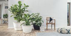 Otium-Design.com // Home