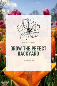 Creating the perfect garden starts with these basic tips. Gardening Tips, How To Plan, How To Make, Decorating Your Home, Backyard, Make It Yourself, Spring, Patio, Backyards