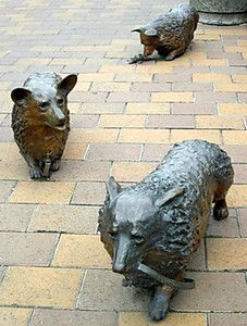 Christchurch Corgi sculpture #corgi