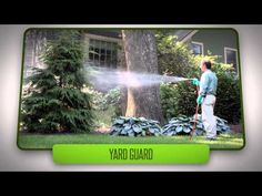 The Safest, Most Effective & Affordable Pest Control Boise Area Offers. Get Started Today! For A Quick and Easy Consultation Call (208) 297-7947. http://greenguardpestcontrol.com