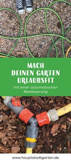 Wie finde ich eigentlich einen Schrebergarten (in Berlin Garten