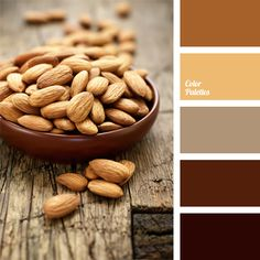 Natural and harmonious scale of various shades: almond, honey, clay, light and dark brown-gray and brown. Brown monochrome palette is traditionally used for the exterior of suburban residential houses in the classical style.