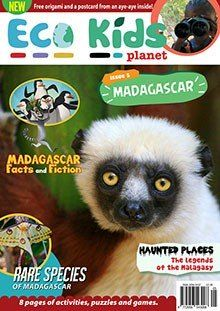Teach your children about penguins and other animals with @ecokidsplanet #Magazine #WorldPenguinDay