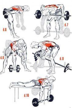 Ejercicios para el Gym