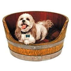 Lucky are the pets that are provided with such lavish luxuries and comfortable furniture items for them. We have already discussed that Americans spend each…