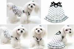 Thin stretchy cute cotton dog dress, with draped skirt. Dresses up over the head