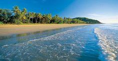 Port Douglas and Daintree Rainforest (UNESCO World Heritage Site) North Queensland, Australia Great Barrier Reef, Queensland Australia, Australia Travel, Cairns Queensland, Tasmania, Mykonos, Santorini, Perth, Brisbane