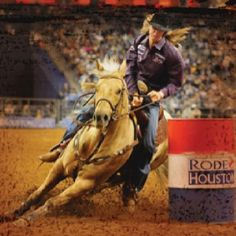 Sherry Cervi and Stingray winning RodeoHouston Super Series II!!