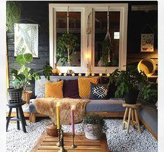 Leuk die planten voor het raam....