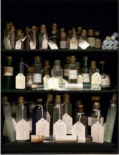 Susan Hiller: Homage To Joseph Beuys 1969-2009 [So Before Damien Hirst's Pharmacy then?]