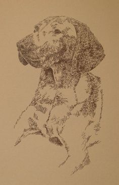 Dog art drawn entirely from the word Vizsla. I will donate one dog art print, drawn from only words, to your animal rescue or animal shelter fundraiser when you purchase one for yourself or as a gift. drawdogs.com http://drawdogs.com/product-category/free-dog-rescue-art/