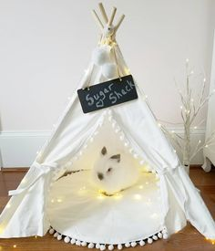 Sugar in his teepee tent sugar shack. <<I like this but I wouldn't leave the string lights laying around since the bunny could easily chew it up. Bunny Cages, Rabbit Cages, Rabbit Toys, Pet Rabbit, House Rabbit, Bunny Beds, Bunny Room, Diy Bunny Toys, Diy Cat Tent