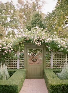 Those HEDGES! 17 Lattice Fence Examples (AWESOME WAYS TO USE)