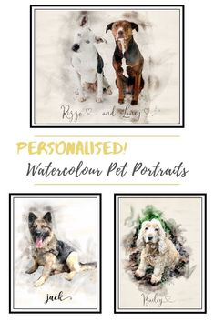 Watercolour pet portraits make a wonderful gift for any pet owner Custom Dog Portraits, Pet Portraits, Animal Paintings, Animal Drawings, Watercolor Effects, Watercolour, Wall Art Quotes, Pet Memorials, Dog Lovers