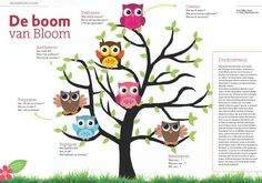 Met de boom van Bloom stelt u de juiste vragen - CPS.nl Coaching, Clever Kids, Job Info, 21st Century Skills, Instructional Design, Speech Language Therapy, Skills To Learn, Thinking Skills, Working With Children