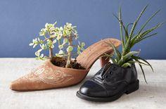 Repurposed Shoe Planter