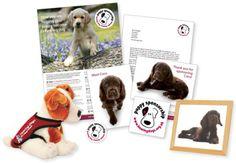 Puppy Sponsorship welcome pack - http://www.hearingdogs.org.uk/donate/puppysponsorship