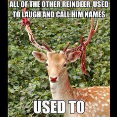 LOL :) ...dark humor is the best!