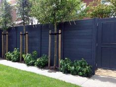 Easy Cheap Backyard Privacy Fence Design Ideas - Page 3 of 8 - channing news