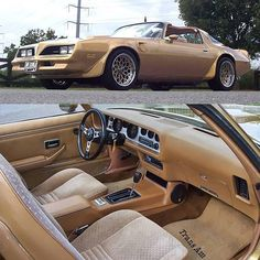 1970 to 1981 Pontiac Firebird Trans Am 1981 Trans Am, 1978 Pontiac Trans Am, Pontiac Firebird Trans Am, Trans Am Ws6, Bandit Trans Am, Pontiac Cars, Chevy Muscle Cars, Unique Cars, Us Cars