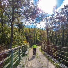 Ex railwey line Parenzana. #mtb #mtbgirl #mountainbiking #cult #CyclingShots #bikewander #msfighter #bikems #parenzana #istra #croatia #hrvatska #istragram #goplayoutside #bridge #railway #outdoorlife #mypursuit #adventure #gooutside #tripadvisor (at Motovun) photo www.k8dizajn.si