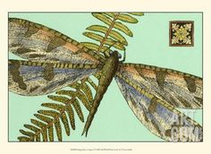 Dragonfly on Aqua I Art Print at Art.com