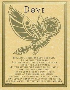 DOVE PRAYER - POSTER  Wicca Pagan Witch Witchcraft Goth BOOK OF SHADOWS TOTEM