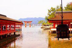 #SHRINE #ITSUKUSHIMA_SHRINE #HATSUKAICHI #YAMAGUCHI #CITYS_PRIDE