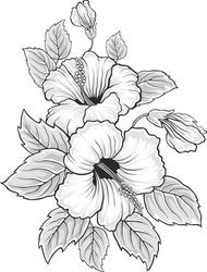 Coloring Pages For Grown Ups, Flower Coloring Pages, Coloring Pages To Print, Colouring Pages, Adult Coloring Pages, Hibiscus Flower Drawing, Hibiscus Flowers, Flower Art, Drawing Flowers