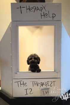 A kissing booth for dogs both small and large. Fund raising idea for sheltered animals. | countrydesignstyle.com