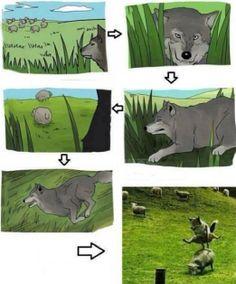 Go home wolf youre drunk - http://www.jokideo.com/