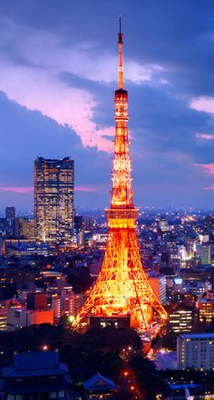 Tokyo, Japan - experience the ultimate night life!