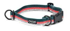 Rainbow Fish Skin Stunt Puppy Croakies Ltd. Edition:  Everyday Dog #Collar