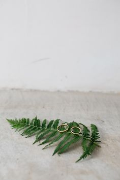 Wil jij een botanical themabruiloft? Lees meer over dit thema op de site! Foto: Selah Photography