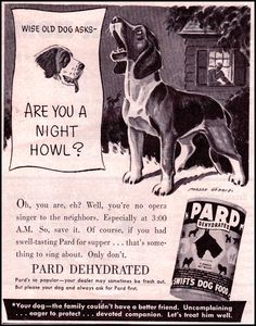 1943 PARD DOG FOOD AD featuring a BEAGLE!